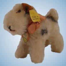 Steiff's Tiny 8 cm Foxy Fox Terrier With All IDs