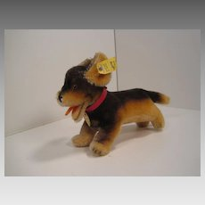 Steiff's Smallest Mohair  Lumpi Dachshund Dog With All IDs