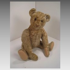 Steiff's World War II-era Silk Plush Teddy Bear With IDs