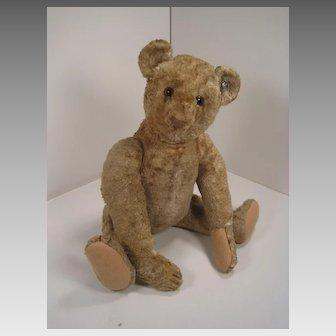 Steiff's World War II-era Silk Plush Teddy Bear With IDs