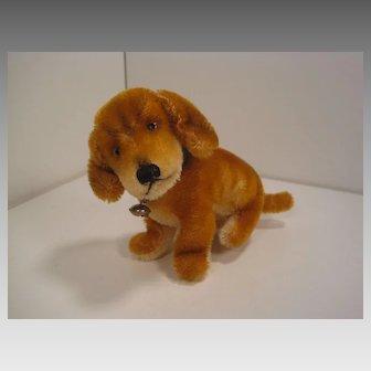 Steiff's Smallest Sized Bazi Dog With ID