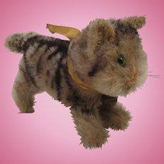 Steiff's Almost Smallest Early Postwar Tabby Cat