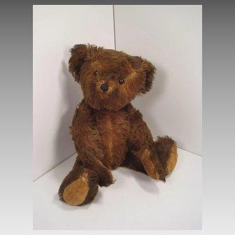 Charming Vintage Musical Brown Mohair Teddy Bear