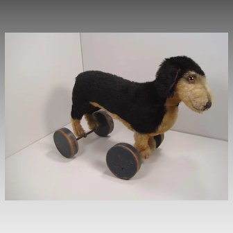 Steiff's Fabulous Prewar Brown and Black Mohair Dachshund on Eccentric Wooden Wheels With ID