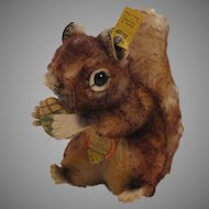 Steiff's Medium Sized Perri Squirrel With All IDs