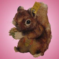 Steiff's Medium Sized Perri Squirrel With All IDs