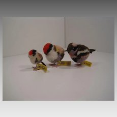 Collection of Three Steiff Woolen Miniature Birds With All IDs