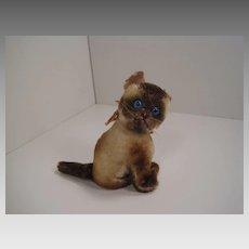 Steiff's Smallest Early Postwar Siamy Siamese Cat Kitten