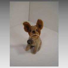 Steiff's Smallest Prewar Light Brown and Tan Mohair Bully the Bulldog With ID