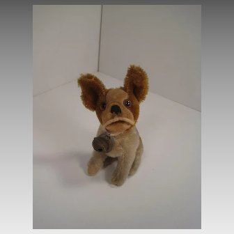 Steiff's Smallest Prewar Light Brown and Tan Mohair Bully the Bulldog With ID