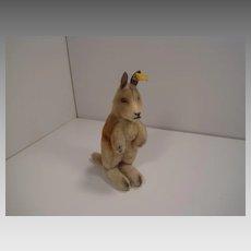 Steiff's Boy Kangaroo With IDs