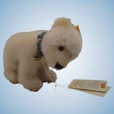 Steiff Replica Standing White Mohair Polar Bear Cub With All IDs
