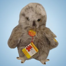 Steiff Soft Plush Baby Young Owl With All IDs