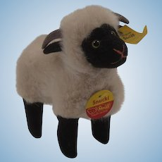Steiff Plush Snucki Sheep With All IDs