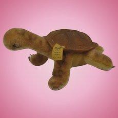 Steiff Medium Slo Turtle With IDs