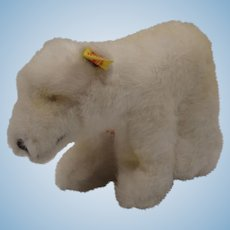 Steiff White Soft Plush Starly Polar Bear With All IDs