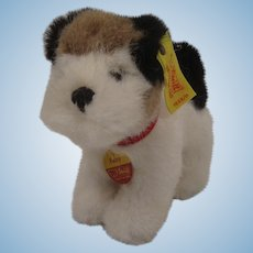 Steiff Soft Plush Foxy Fox Terrier With All IDs