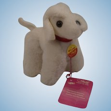 Steiff White Plush Whitey Poodle With All IDs