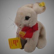 Steiff Soft Plush Pummy Rabbit With All IDs