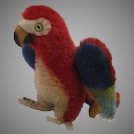 Steiff's Smallest Lora Parrot With IDs
