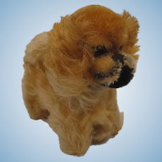 Steiff Almost Smallest Sized Peky Pekingese Dog With IDs