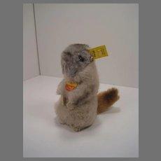 Steiff Soft Plush Piff Marmot With All IDs
