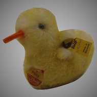 Steiff Smallest Piccy Duck With All IDs