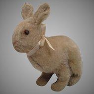 Steiff Very Early 20th Century Mohair Rabbit With ID
