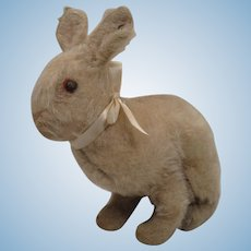 Steiff Very Early 20th Century Mohair Rabbit With ID