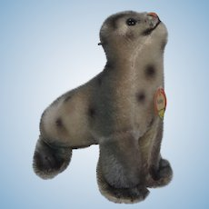 Steiff Smallest Mohair Robby Seal With ID