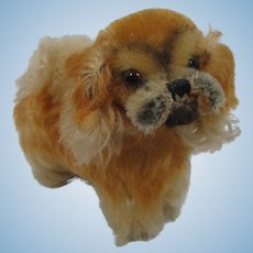 Steiff Almost Smallest Peky Pekingese Dog With IDs