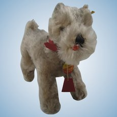 Steiff Medium Sized Tessie Schnauzer With All IDs and More