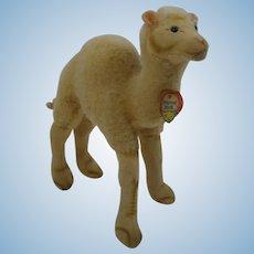 Steiff Smallest Wool Plush and Velvet Camel With ID