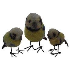 Steiff Family of Woolen Miniature Blue Tit Birds