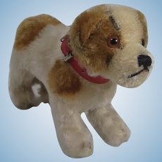 Steiff Medium Sized St. Bernard Dog With IDs