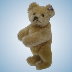 Steiff Prewar Smallest Blonde Teddy Bear With ID