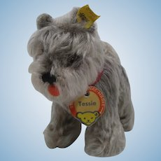 Steiff Medium Sized Tessie Schnauzer With All IDs