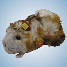 Steiff Soft Plush Swinny Guinea Pig With All IDs