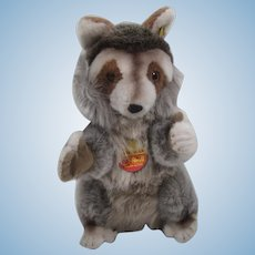 Steiff Soft Plush Molly Raggy Raccoon With All IDs
