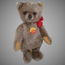 Steiff Brummbaer or Growler Teddy Bear With All IDs