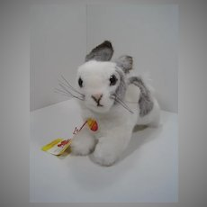 Steiff White and Grey Spottilli Jumping Rabbit With All IDs