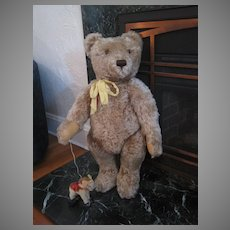 Steiff HUGE Caramel Mohair Original Teddy Bear With IDs and FAO Schwarz Tag