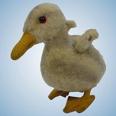 Steiff Prewar Wool Plush Duckling With ID