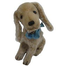 Steiff Prewar Treff the Bloodhound Dog With IDs
