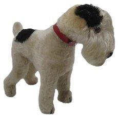Steiff Prewar Standing Fox Terrier With ID