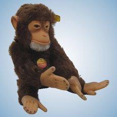 Steiff Medium Sized Jocko Chimp With All IDs