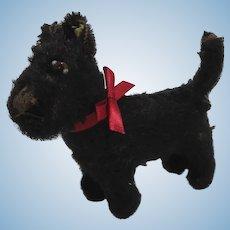Steiff Smallest Postwar Scotty Dog With IDs