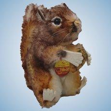 Steiff Medium Sized Mohair Perri Squirrel With All IDs