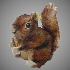 Steiff Medium Sized Perri Squirrel With All IDs