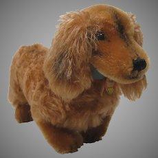 Steiff Smallest Postwar Waldi Dachshund Dog With IDs